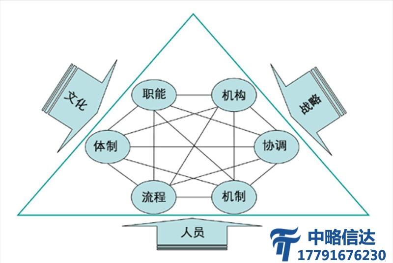 组织结构凯发电游网址
